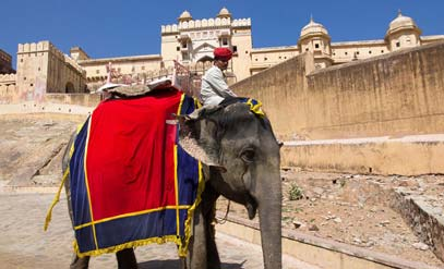Elephant Ride - Amber Fort